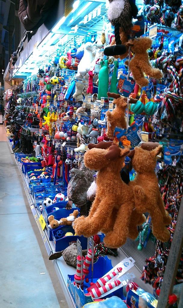 IMAG0123 Hundespielzeugwand