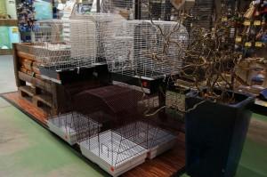 Vogel Käfige Abteilung