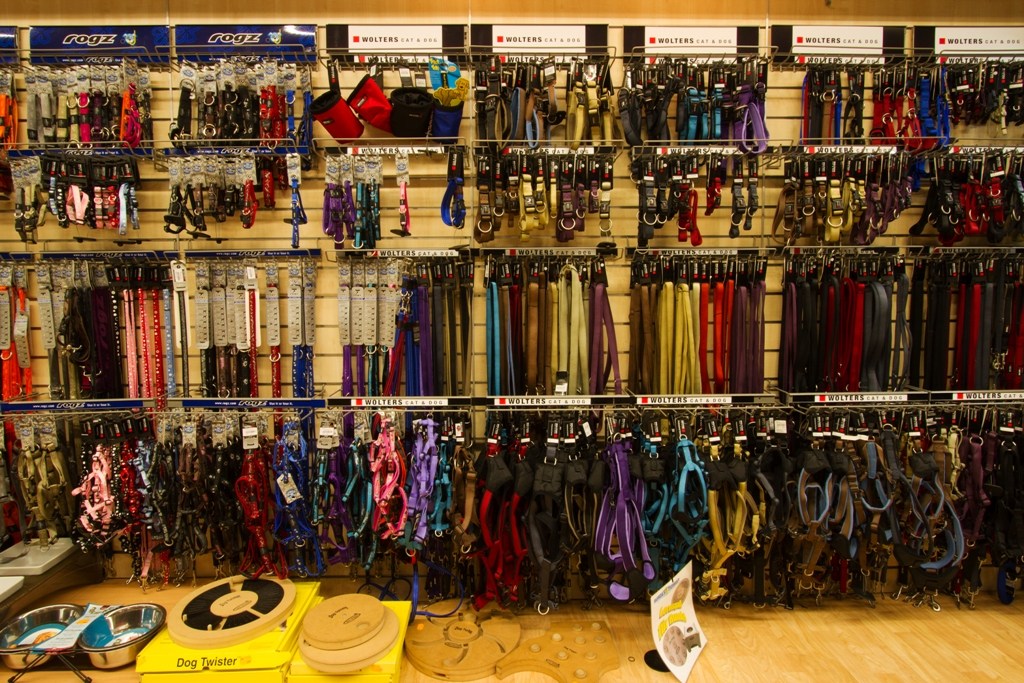 Hundehalsband Hundehalsbänder