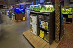 Unsere Aquarienabteilung