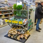 Plastikpflanzen und Dekosteine