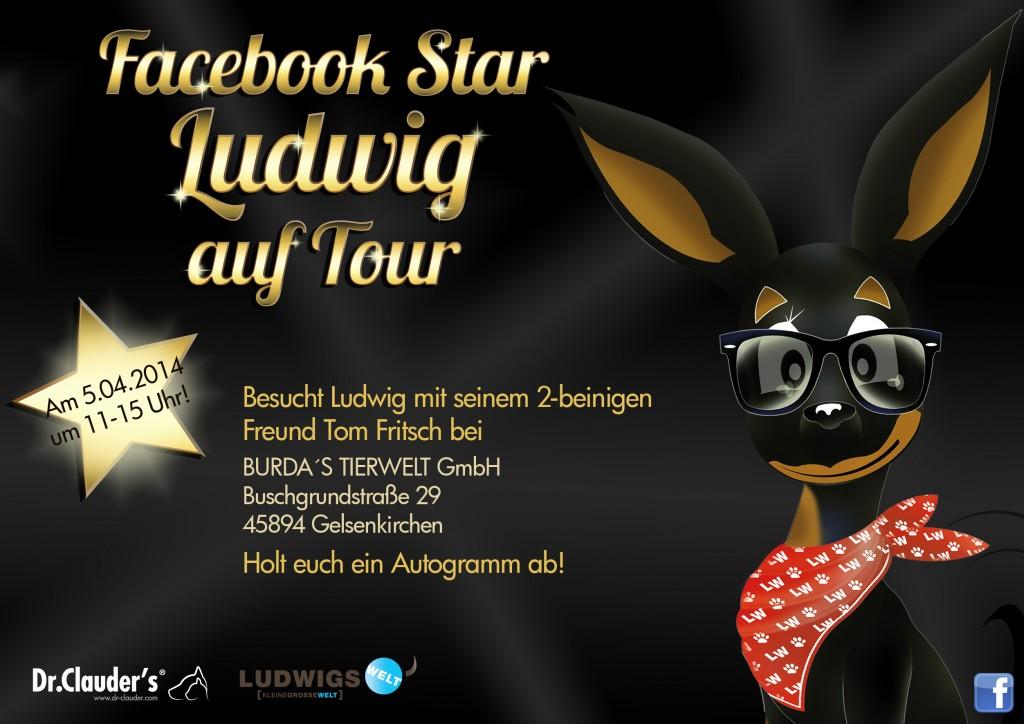 Facebook Ludwig